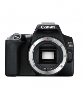 Canon 250D only body
