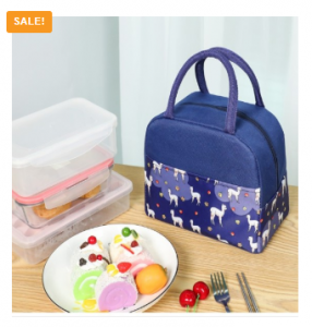 2020 Newest Portable Women Lunch Bag Fashion Insulated Thermal